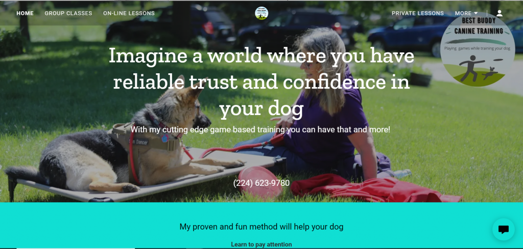 Copy Niche Copywriting - Best Buddy Dog Training