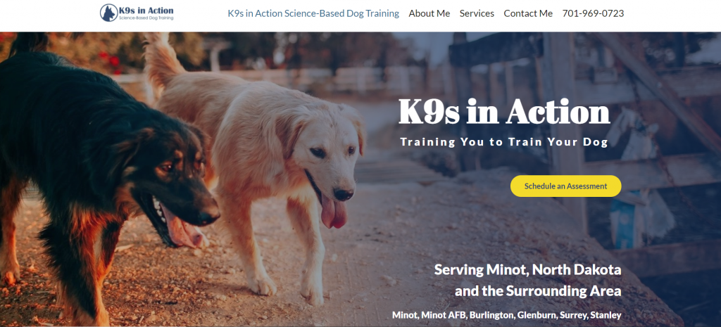 K9s in Action Dog Training Hero Image