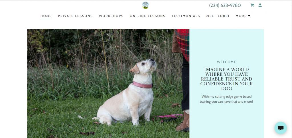 Best Buddy Canine Dog Training